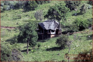 Mountain side cottage at Saruni