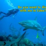 Do you want to dive with me in Cuba?