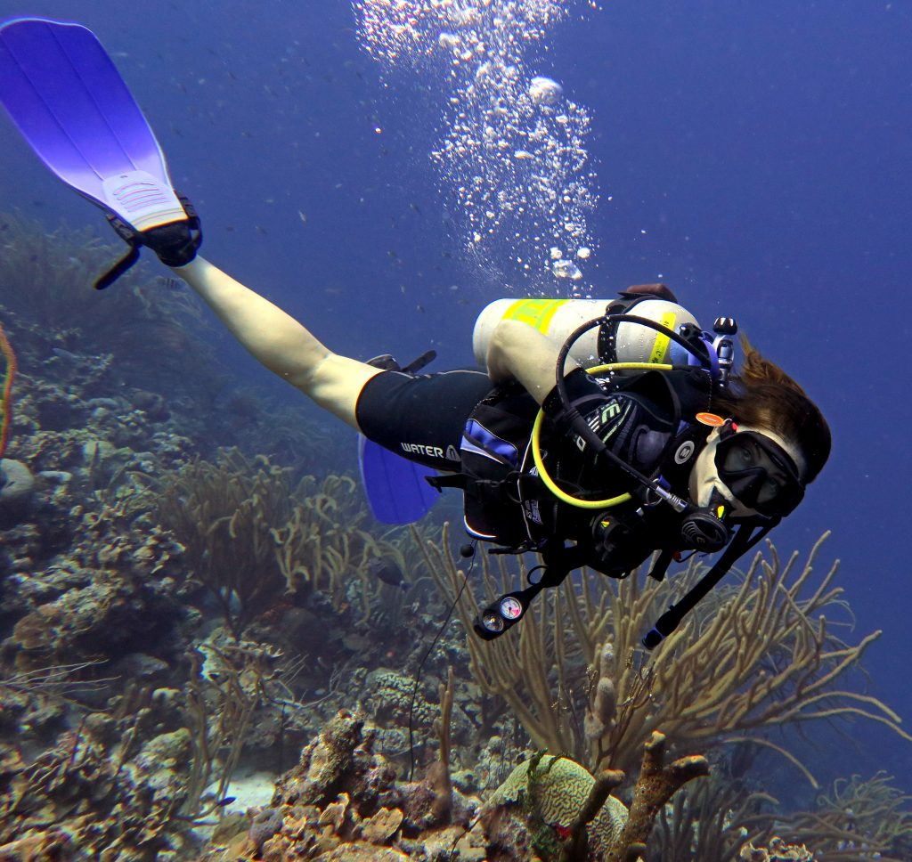 Is Bonaire Bucket List Worthy for Diving?