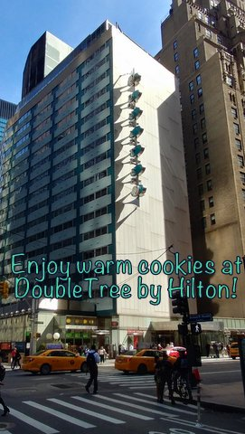 Do You Love Cookies? Double Tree by Hilton Does TOO!