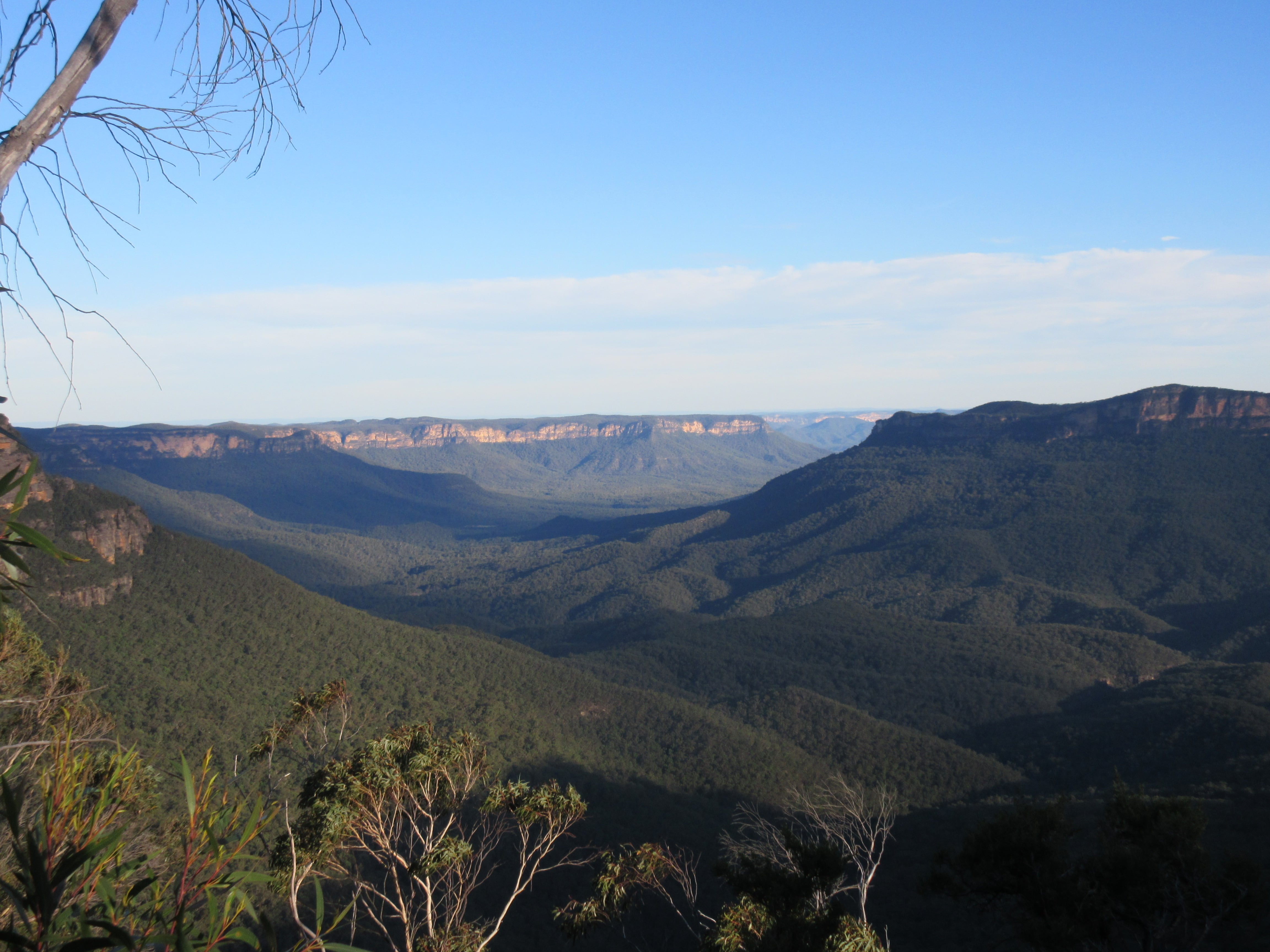 Left my heart in the Blue Mountains, Australia