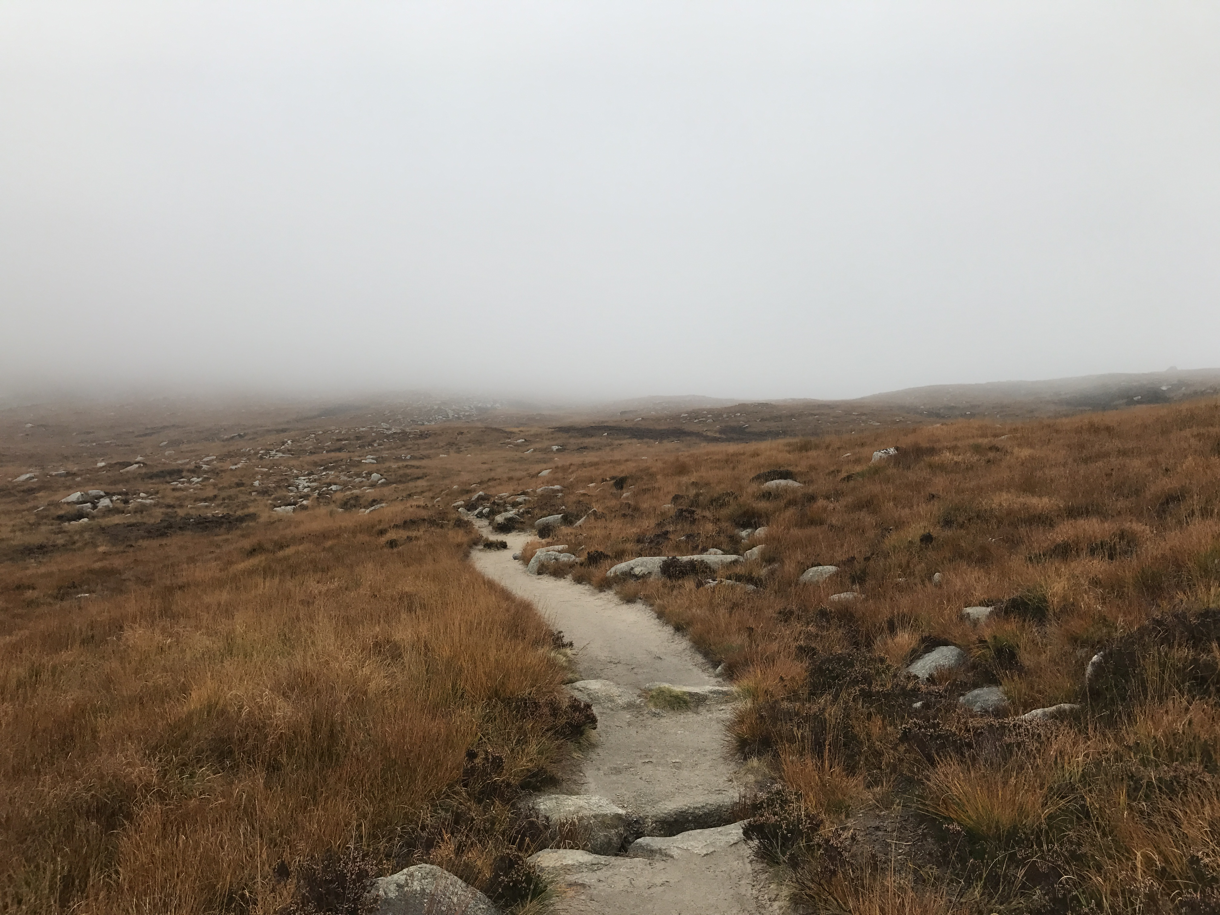 Fog over Goatfell, Scotland