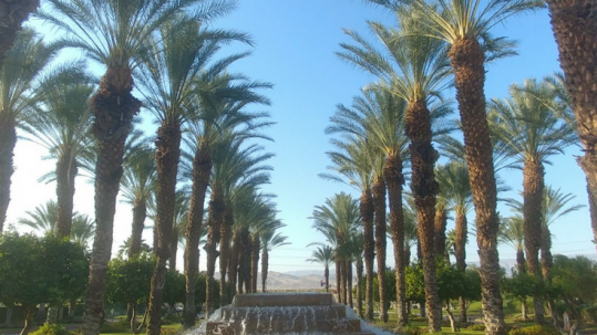 Where to stay and play in Rancho Mirage