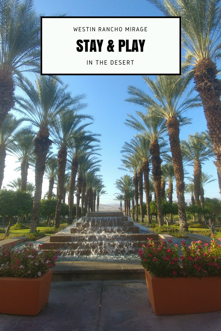Are you Ready to Stay and Play in Palm Springs?