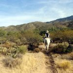 Tanque Verde: From City Slicker to Cow Girl